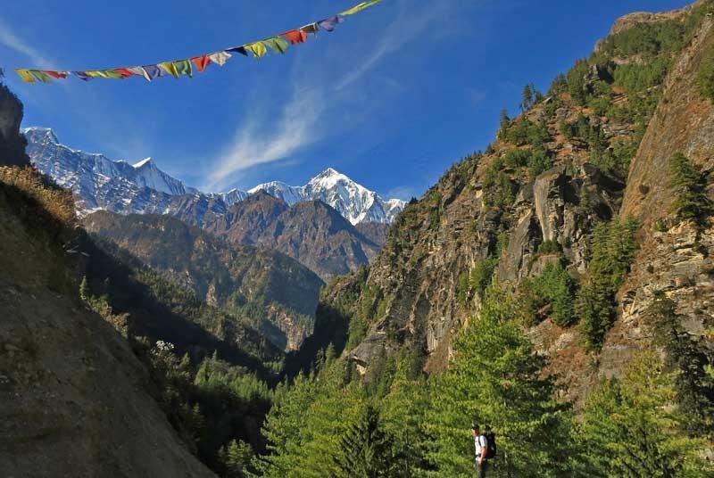 Trekking door de bergen - Nepal reis