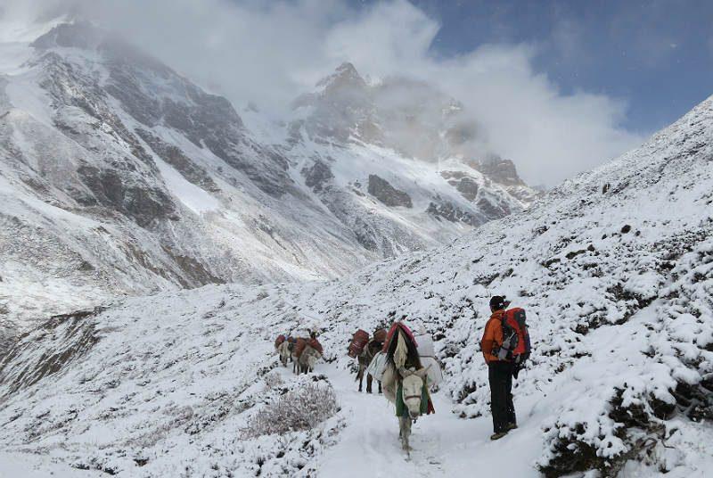 Trekking Annapurna sneeuw