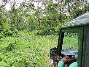Barauli - bijzondere nepal reis