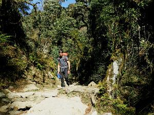 Annapurna basecamp trekking - Nepal