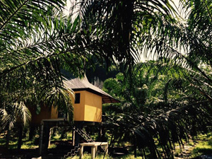 kerst rondreis Thailand: Anurak Lodge