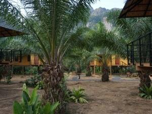 3 weken Thailand met kinderen - lodge Anurak in Khao Sok