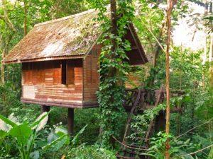 actieve gezinsvakantie Thailand - jungle lodge