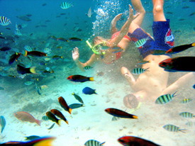 vakantie Thailand met kinderen - snorkelen Ko Tao