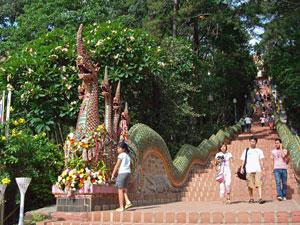 Olifanten Thailand met kinderen: Doi Suthep tempel
