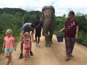 Hua Hin- olifanten