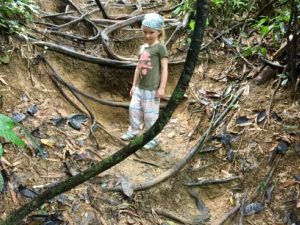 Jungle in Thailand met kinderen - Khao Sok