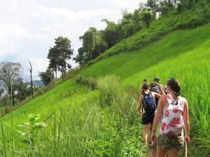 reis door Thailand trekking