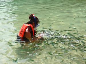 eilanden Zuid Thailand snorkelen