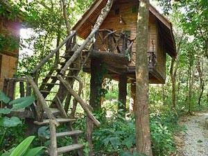 bungalow jungle Khao Sok thailand
