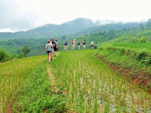 thailand-trekking-landschap