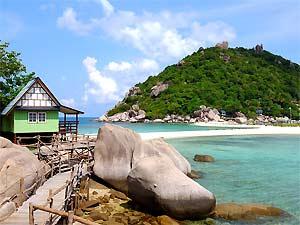 Schilpadeiland Ko Tao Thailand