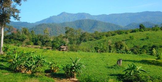 Natuur Thailand reizen