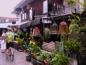 fietsen Bangkok Hoogtepunten Thailand