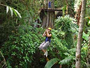 tree top adventure park thailand