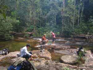 cambodja trekking cardamom gebergte