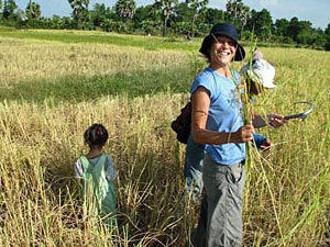 cambodja reizen - op het land werken