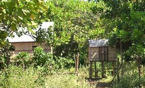cambodja paalwoningen banlung