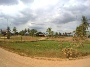 platteland Cambodja, peperplantages Cambodja, rijstvelden Cambodja