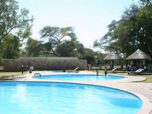 etosha zwembad namibie