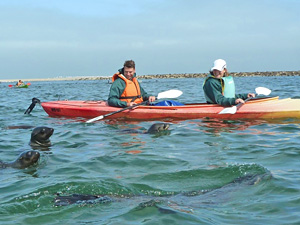 swakopmund kayak namibie