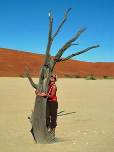zandduinen namibie sossusvlei