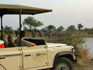 mudumu gamedrive botswana