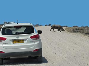 Namibië auto rijden