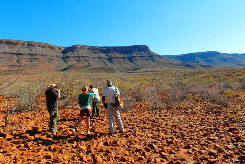 Damaraland-neushoorn-trekking