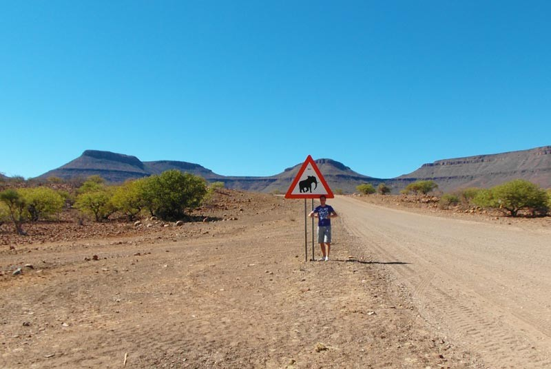 Damaraland-woestijnolifant-selfdrive