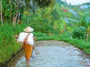 wandeling rondreis java bali indonesie