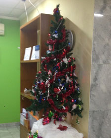 kerst in indonesie kerstboom