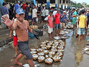 vismarkt makassar indonesie