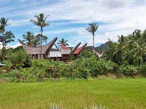 rantepao huis indonesie