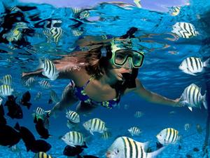 snorkelen in zuid sulawesi indonesie