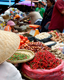 indonesische ingredienten indonesie