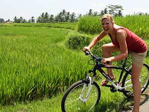fietsen rijstveld bali