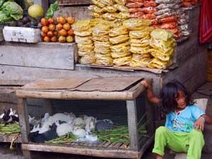 Gezondheid Indonesië