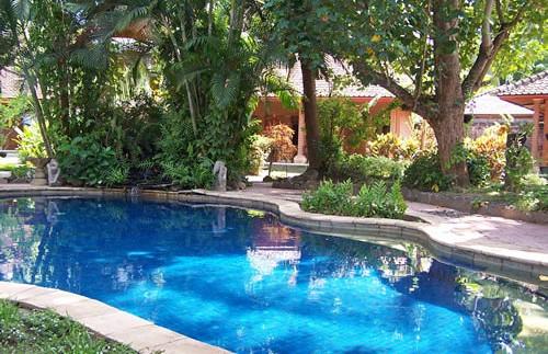 zwembad lovina rondreis indonesie