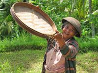 bali en java reistips indonesie