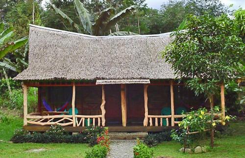jungle sumatra lodge