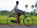Rondreis 1: Java en Bali in vogelvlucht