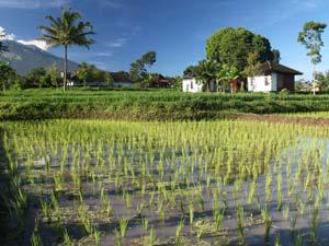 Sunda-eilanden Lombok klimaat