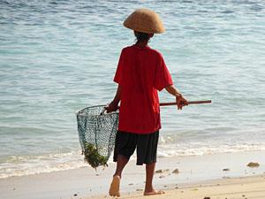 vissen strand nusa lembongan bali