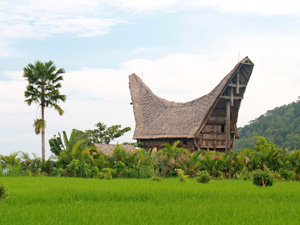 overnachten Toroja homestay Indonesie