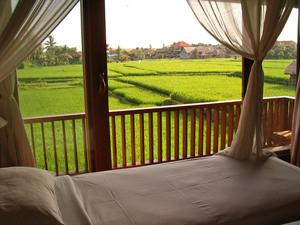 slapen tussen rijstvelden bali indonesie