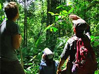 Indonesië reizen Sumatra