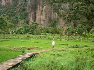 sumatra harau indonesie