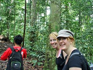 sumatra jungletrekking indonesie