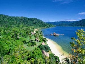 sumatra cubadak indonesie